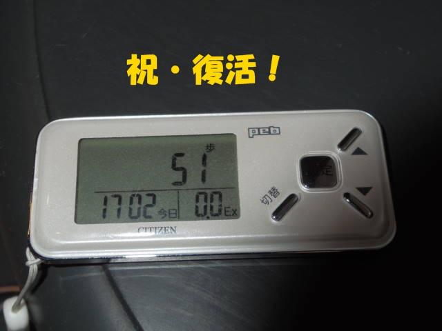 Imgp2734