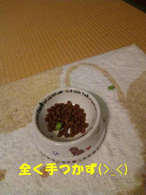 Fotor_147030859949763
