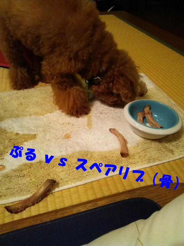 Fotor_147773911069545_2
